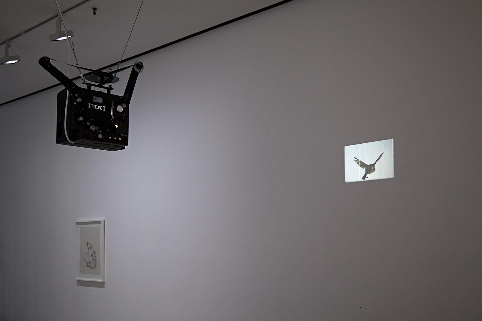Axel Antas - Installation view