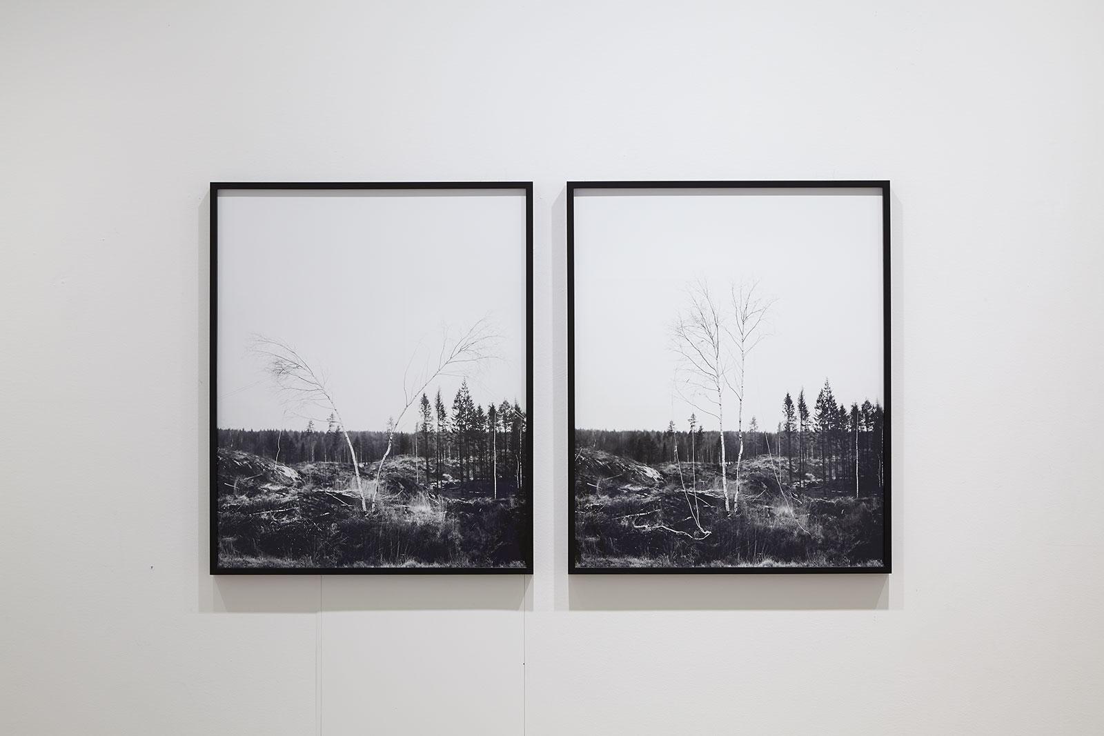 Axel Antas - Shaped Views