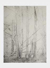 Pencil on coloured paper